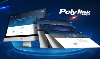 聚领信息(Polylink)