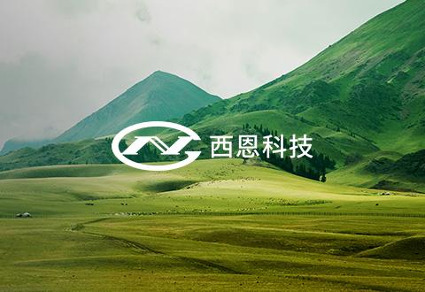 上海西恩科技股份有限公司